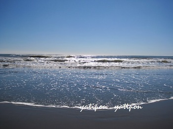 海 001g.jpg